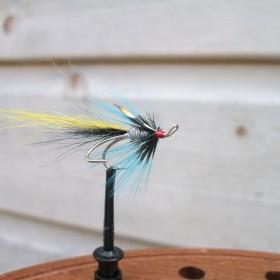 Lochy Shrimp