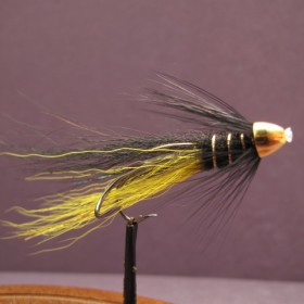 Black & Yellow Snaelda