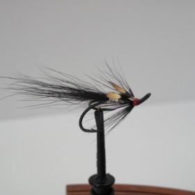 Silver Shrimp
